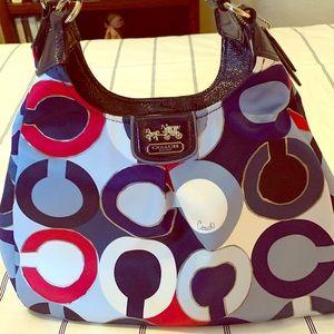Cloth Multi Color Coach Bag